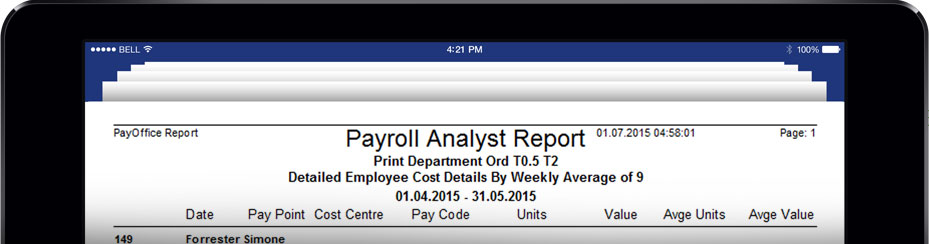 Payroll Analyst Report